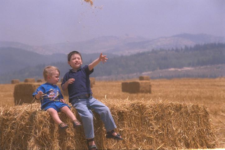 flickr_-_government_press_office_gpo_-_children_in_a_wheat_field