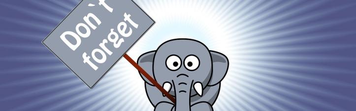 elephant-1090828_960_720